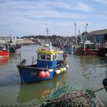 Whitstable Harbour fishing boats